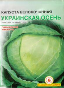 Seeds cabbage white Ukrainian fall