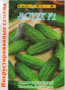 Seeds cucumber gherkin Zyatek F1