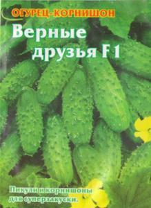 Seeds cucumber gherkin Loyal Friends of F1