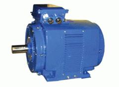 Электродвигатели 4АМНУ 225, 250 предназначены для
