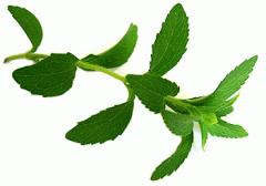 Crimean stevia leaf of dried 50 g.