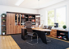 """Office furniture """"Set for an office"""