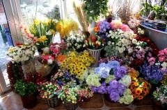 Artificial flowers, quality.