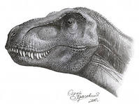 Предметы интерьера Палео Арт дизайн. Дизайн интерьеров, палеонтология,аммонит,динозавр