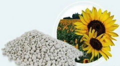 The granulated nitrogen-sulfur fertilizer