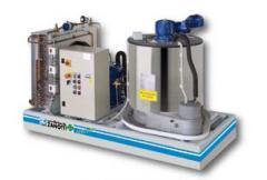Ice generator of scaly ice