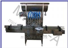 The DN batcher filler 20.01 for a fasovaniye in a