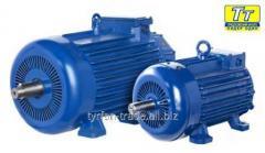 Электродвигатель МТН (F) 412 22кВт/750