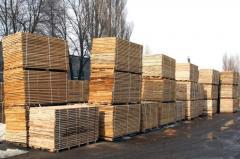 Parquet board ash-tree