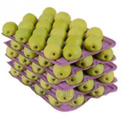 Альвеоли для фруктів