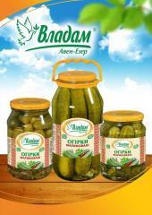 TM pickles Vladam