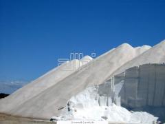 Salt technical transportation delivery sale