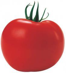 Семена томатов ТАМАРИС F1 250 сем.
