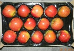Apples Dzhonagold