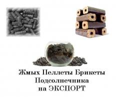 Biofuel. Realization of biofuel on the foreign