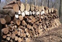 Дрова сухие,твердолиственные доставка Киев область