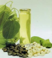 Основи та компоненти для виробництва косметичних засобів та парфумерії