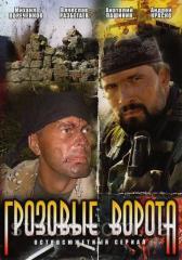 DVD-диск. Грозовые ворота (А.Краско) (мини-сериал)
