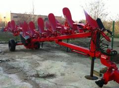 Plow of Kuhn of 8 cases