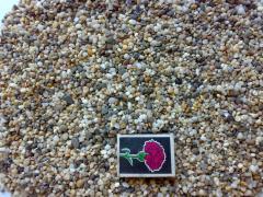 Soil for an aquarium - Pebble sea small