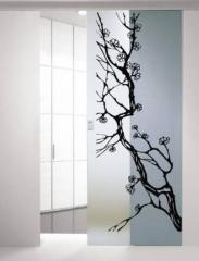 Двері декоративні скляні | Sokolglass