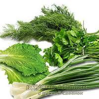 Зелень органическая от производителя.