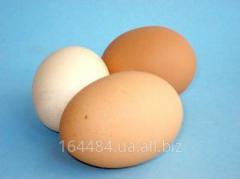 Яйцо куриное и яичная продукция