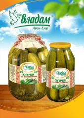 Pickles home-style TM Vladam