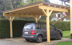 Canopy for the car from a tree