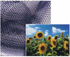 Fabrics sitovy - polyamide filet nets on sieve: