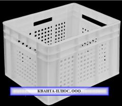 Boxes for transportation of daily chickens