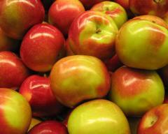 Яблоки, продажа, Украина