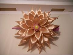 Chrysanthemum on a clip