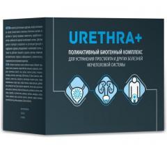 Urethra + (Уретра+)- капсулы от простатита