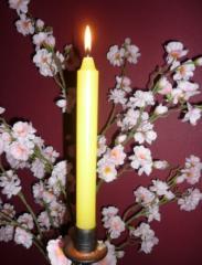 Свечи парафиновые МОРАВА