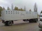 Pojazdy do transportu bydła