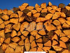 Firewood sale, Donetsk