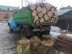 Firewood of an oak and strong breeds of wood in