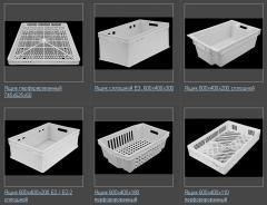 Boxes for plants, wholesale, expor