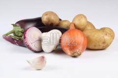 Ovoshchi:kartofel the Chernihiv region to buy,