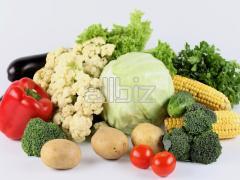 Vegetables svezhiye:kartofel the Chernihiv region
