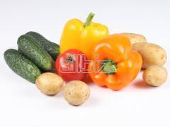 Vegetables fresh: cabbage, beet, carrots, potatoes