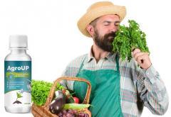 AgroUp (AgroAp) - universal fertilizer