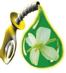 """We sell the biodiesel """"Methyl air of"""