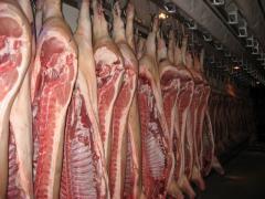 Sale of pork of half carcass