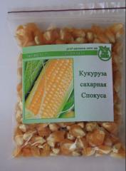 Семена кукурузы сахарной Спокуса 100г