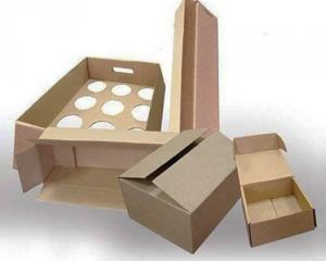 Corrugated packaging, gofrotara, container from a