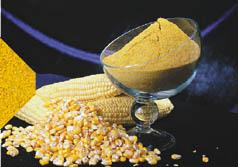 Шрот соевый 51,5% протеин