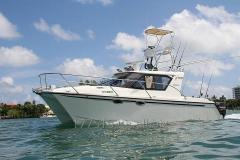 ArrowCat Mini-yacht 30,2015 years