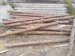 Wood round, round timber, logs